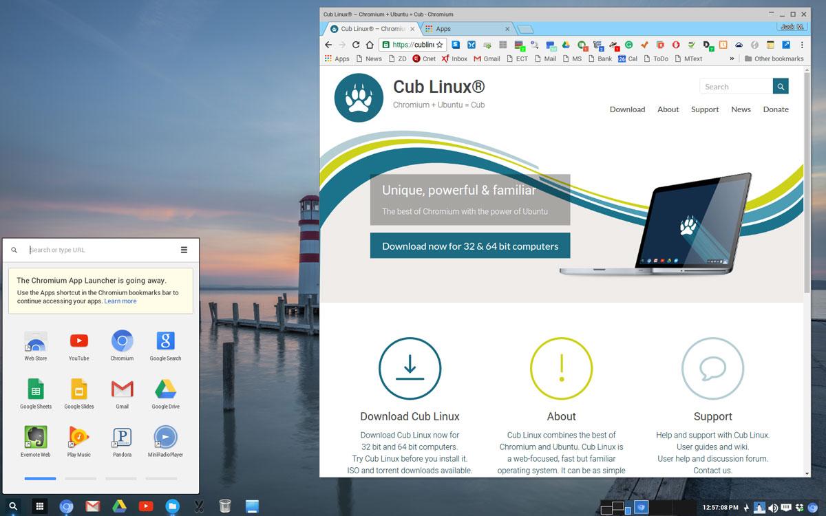 Cub Linux Is a Worthy Chromixium Offspring