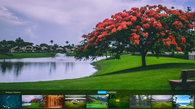 Deepin Linux 15.10 Wallpaper selection panel and slideshow feature